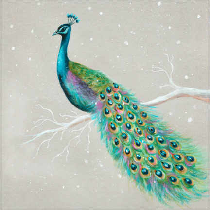 Acrylglasbild  Pfau im Winter - Ileana Oakely