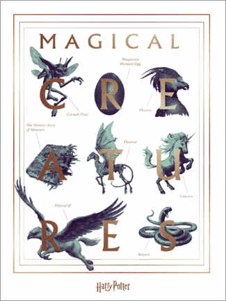 Holzbild  Harry Potter - Magical Creatures