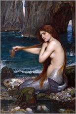 Wandaufkleber  Die Meerjungfrau - John William Waterhouse