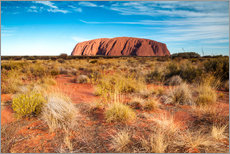 Gallery Print  Ayers Rock am Abend - Matteo Colombo