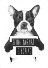 Wandsticker  Being normal is boring - Balazs Solti