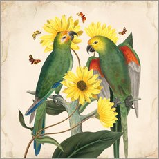 Wandsticker  Oh My Parrot II - Mandy Reinmuth