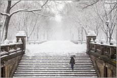 Gallery Print  Winter im Central Park