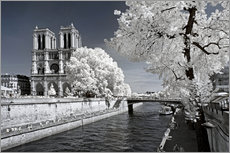 Gallery Print  Infrarot ? Kathedrale Notre-Dame de Paris - Philippe HUGONNARD