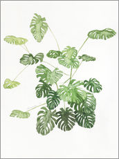Wandsticker  Monstera - Jennifer McLennan