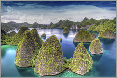 Gallery Print  Raja Ampat in Indonesien - Jones & Shimlock
