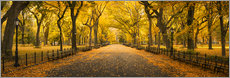 Jan Christopher Becke - Central Park in New York City, USA