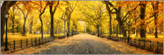 Premium-Poster  Central Park im Herbst - Art Couture