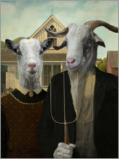 Gallery Print  American Goat - Philippe Tyberghien