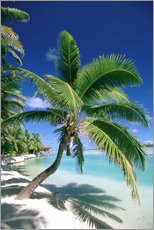 Gallery Print  Aitutaki auf Cook Islands - Douglas Peebles