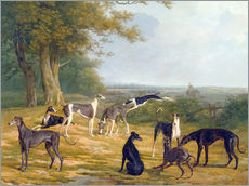 Wandsticker  Neun Windhunde in einer Landschaft - Jacques Laurent Agasse