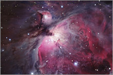 Gallery Print  Orion-Nebel - Robert Gendler