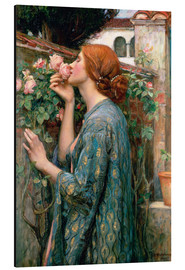 Alu-Dibond  Seele der Rose - John William Waterhouse