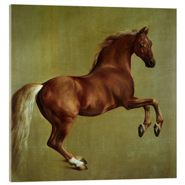 Acrylglas  Whistlejacket - George Stubbs