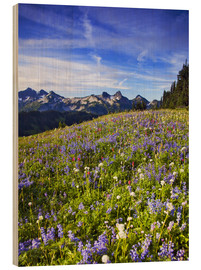 Holzbild  Blumenwiese am Mount Rainier - Chuck Haney
