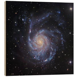 Holzbild  M101, die Spiralgaxie in Ursa Major - Robert Gendler