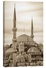 Leinwandbild  the blue mosque in sepia (Istanbul - Turkey) - gn fotografie