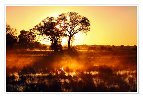 Poster Morgens in Afrika