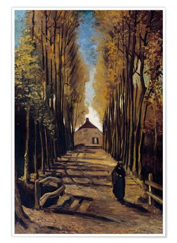 Poster Pappelallee im Herbst