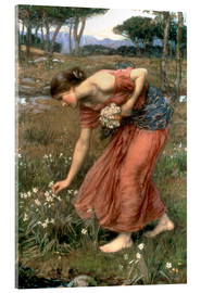 Acrylglas  Narzisse - John William Waterhouse