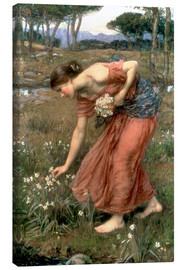 Leinwandbild  Narzisse - John William Waterhouse