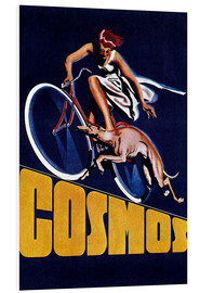 Hartschaumbild  Cosmos Fahrräder - Advertising Collection