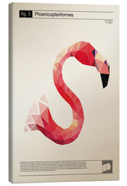 Labelizer - fig3 Polygonflamingo Poster