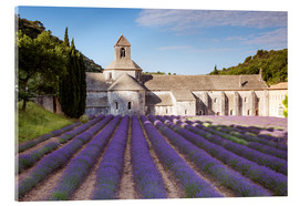Matteo Colombo - Kloster Sénanque, Provence