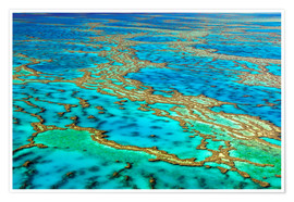 I. Schulz - Great Barrier Reef, Australien