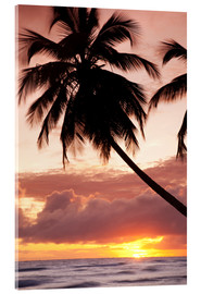 Acrylglas  Tropical sunset, Bridgetown, Barbados, West Indies, Caribbean, Central America - Angelo Cavalli