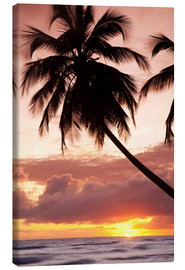 Leinwandbild  Tropical sunset, Bridgetown, Barbados, West Indies, Caribbean, Central America - Angelo Cavalli