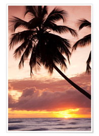 Premium-Poster  Tropical sunset, Bridgetown, Barbados, West Indies, Caribbean, Central America - Angelo Cavalli
