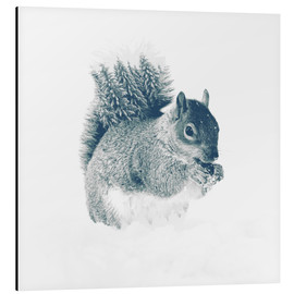 Alubild  squirrel - Peg Essert