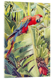 Acrylglas  Jungle Parrot - Felicity House