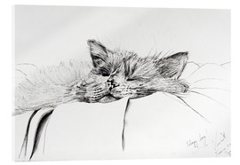 Vincent Alexander Booth - Monty, sleepy boy, ink on paper