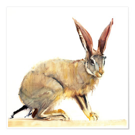 Poster  Hase - Mark Adlington
