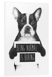 Balazs Solti - Being normal is boring