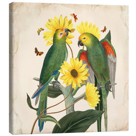 Mandy Reinmuth - Oh My Parrot II