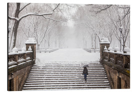 Winter im Central Park