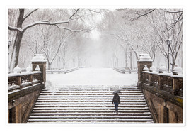 Premium-Poster  Winter im Central Park