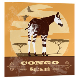 Acrylglasbild  Kongo - Okapi - Kidz Collection