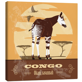 Kidz Collection - Kongo - Okapi