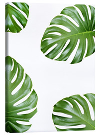 Leinwandbild  Angriff der Monstera - Finlay and Noa