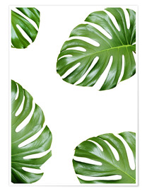 Premium-Poster  Angriff der Monstera - Finlay and Noa