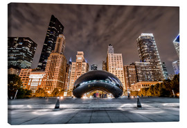 Sören Bartosch - Cloud Gate Chicago