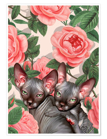 Poster Sphynx among roses