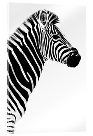 Philippe HUGONNARD - Safari Profil Collection - Zebra White Edition III