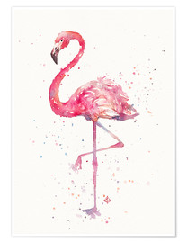 Sillier Than Sally - A Flamingos Fancy