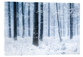 Acrylglasbild  Verschneiter Wald im Winter in Skandinavien - Jan Christopher Becke