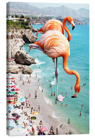 Uma 83 Oranges - Flamingos am Strand